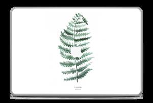 """Pteridium Aquilinum Skin MacBook Pro 17"""" -2015"""