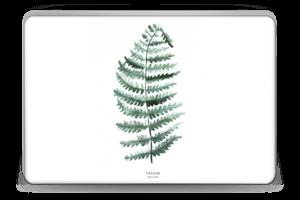 Pteridium Aquilinum Skin Laptop 15.6
