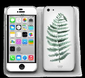 Pteridium Aquilinum Skin IPhone 5c