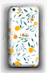 Oranges case IPhone 5c