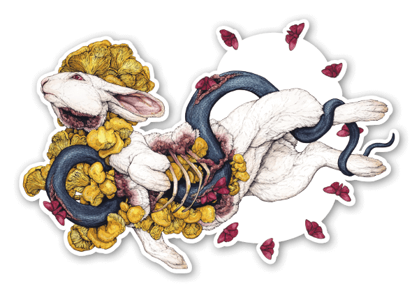 The Contemplation of Lepus sticker