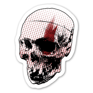 Skull graphic sticker