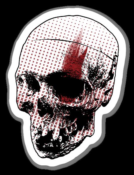 Skull graphic  sticker