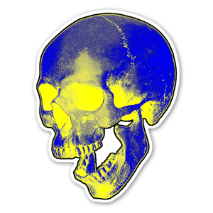 Skull Graphic 2 sticker