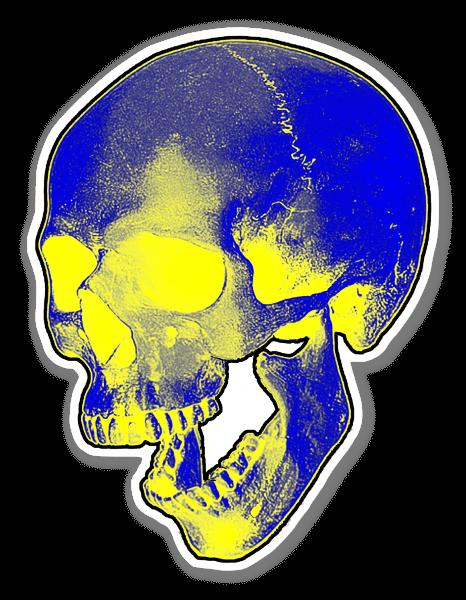 Skull Graphic 2  sticker