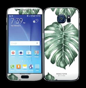Monstera Deliciosa Skin Galaxy S6