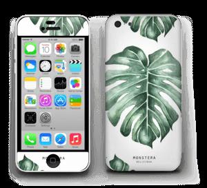 Peikonlehti tarrakuori IPhone 5c