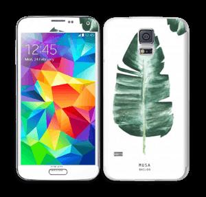 Musa Basjoo Skin Galaxy S5