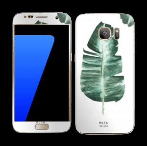 Musa Basjoo  tarrakuori Galaxy S7