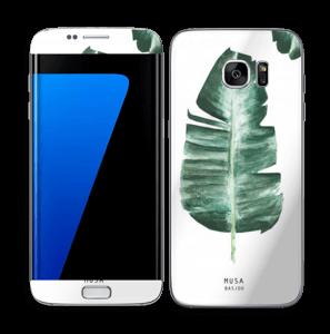 Musa Basjoo Skin Galaxy S7 Edge