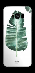 Musa Basjoo  tarrakuori Galaxy S8