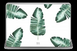 Musa Basjoo  Skin Laptop 15.6