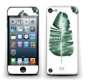 Musa Basjoo  Skin IPod Touch 5th Gen