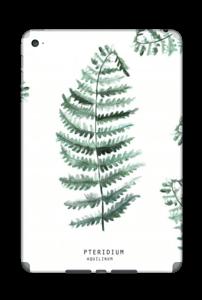Pteridium Aquilinum   tarrakuori IPad Mini 4