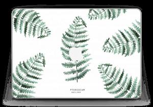 "Pteridium Aquilinum   tarrakuori MacBook Pro Retina 13"" 2015"