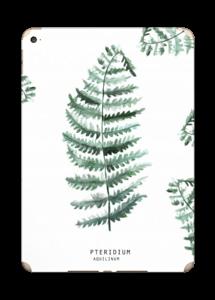 Pteridium Aquilinum   tarrakuori IPad Air 2