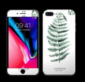 Pteridium Aquilinum   tarrakuori IPhone 8 Plus