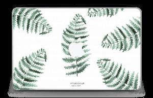 """Pteridium Aquilinum  Skin MacBook Air 11"""""""