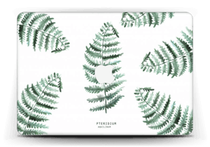 Pteridium Aquilinum   tarrakuori MacBook Air 13""