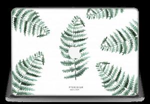 "Pteridium Aquilinum   tarrakuori MacBook Pro Retina 15"" 2015"