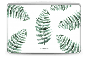 Pteridium Aquilinum   tarrakuori Laptop 15.6