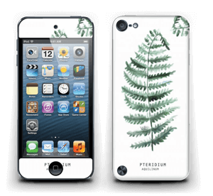 Pteridium Aquilinum  Skin IPod Touch 5th Gen
