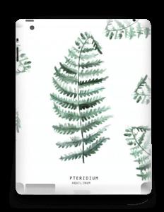 Pteridium Aquilinum  Skin IPad 4/3/2