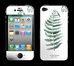 Pteridium Aquilinum  Skin IPhone 4/4s