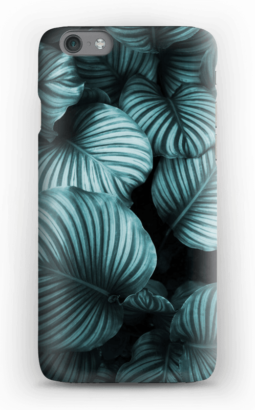 Calathea cover IPhone 6s