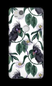 Cockatoo white case Pixel 2