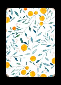 Des oranges Skin IPad Air 2