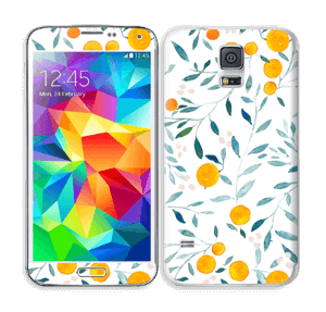 Oranges Skin Galaxy S5