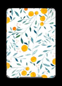 Oranges skin IPad 2018