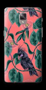 Kakatoes & Rose Skin OnePlus 3T