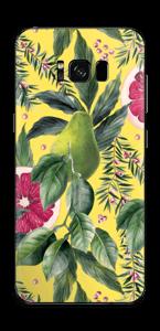 Poire et Pamp Skin Galaxy S8 Plus