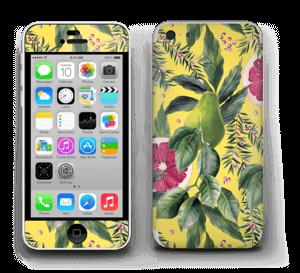 Poire et Pamp Skin IPhone 5c