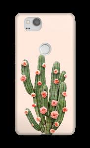 Fleurs de cactus Coque  Pixel 2