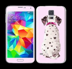 Söpis dalmatialainen tarrakuori Galaxy S5