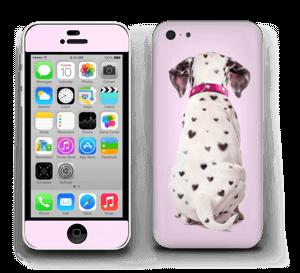 Söpis dalmatialainen tarrakuori IPhone 5c