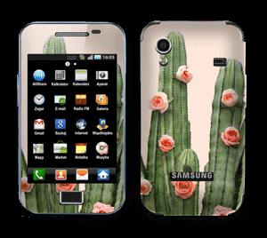 Kukkiva kaktus tarrakuori Galaxy Ace