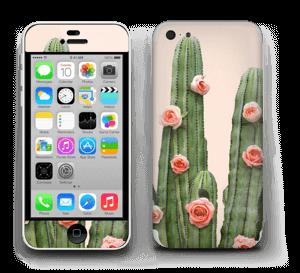 Kukkiva kaktus tarrakuori IPhone 5c