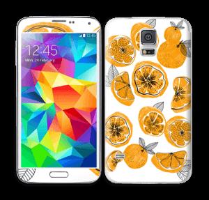 Oranssit appelsiinit tarrakuori Galaxy S5
