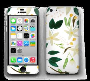 Vanilja tarrakuori IPhone 5c