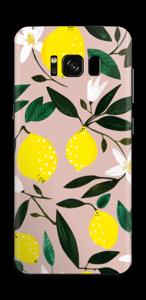 Sitruunat tarrakuori Galaxy S8