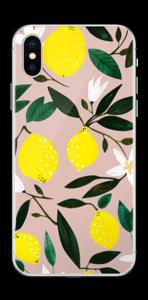 Sitruunat tarrakuori IPhone XS