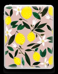 Sitruunat tarrakuori IPad 1