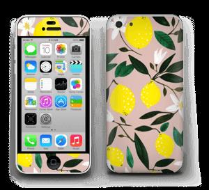 Sitruunat tarrakuori IPhone 5c
