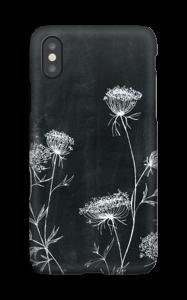 Daucus Carota Coque  IPhone X