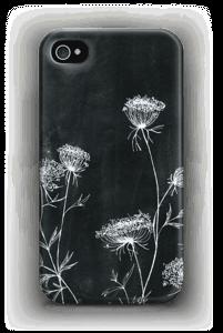 Daucus Carota Coque  IPhone 4/4s