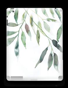 Feuilles d'olivier Skin IPad 4/3/2